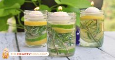 Add some magic to your next outdoor party with this recipe for DIY easy-to-assemble natural bug repellent luminaries using essential oils in mason jars. Keeping Mosquitos Away, Mason Jars, Insect Repellent, Outdoor Parties, Bugs, Easy Diy, Just For You, Candles, Mosquitoes