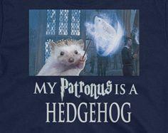 cbf672c6d Hedgehog. Funny HedgehogBaby HedgehogAnimals And PetsFunny AnimalsCute  AnimalsStrange PetsMammalsBunnyCats. Hedgehog Unisex T-Shirt: ...