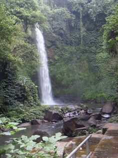 Nung Nung Bali Waterfalls, The Great Outdoors, Places Ive Been, Travel, Nature, Sweetie Belle, Naturaleza, Viajes, Destinations