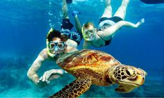 Explore the reef with Ka'ana! #Belize #adventure http://www.kaanabelize.com/blog/index.php/2014/07/18/a-beach-day-during-your-jungle-stay/