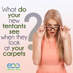 https://flic.kr/p/PJTfoG | Eco Carpet Pro Gives Virginia Beach a Taste of Its Incredible Cleaning Services | Eco Carpet Pro is an award winning carpet cleaning company; it provides impeccable carpet cleaning services like no other carpet cleaning company. Eco Carpet Pro is an expert cleaner of upholstery, carpets, rugs, tiles and grout. Numerous clients in Yorktown, Williamsburg, Virginia Beach, Hampton, Chesapeake, Portsmouth, Suffolk, and Norfolk have attested to the excellent carpet…
