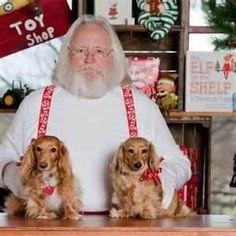 At the North Pole - I just knew Santa had doxies!