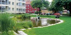 Rainwater ponds for buffering and purifying extremely polluted water | Urban green-blue grids