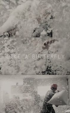 BTS / Butterfly / Wallpaper