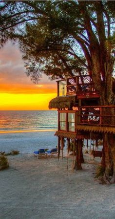 Beach tree house theburninglotus  Perfect!!!!