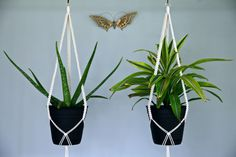 Macrame Plant Hanger 40 Knotted Natural White Cotton