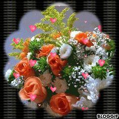 Foto com animação Beautiful Flowers Wallpapers, Beautiful Rose Flowers, Beautiful Flower Arrangements, Amazing Flowers, Flowers Gif, Night Flowers, Butterfly Flowers, Beau Gif, Welcome Images