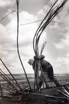 © Sebastião Salgado Fine Art Photography, Amazing Photography, Street Photography, Urban Photography, Documentary Photographers, Famous Photographers, Edward Weston, Photo Documentary, Magnum Photos