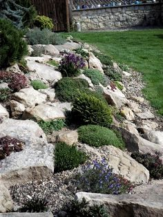 Local 70 Rock for Yard Landscaping Succulent Rock Garden, Rock Garden Plants, Diy Garden, Garden Stones, Garden Ideas, River Rock Landscaping, Landscaping With Rocks, Front Yard Landscaping, Landscaping Ideas