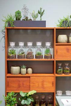 Habitare 2019   Hyggekimput ja huonekasvit – Versoileva