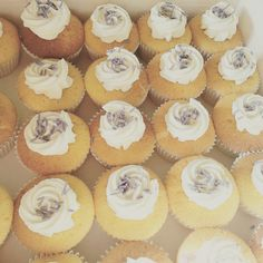 Wedding cupcakes-vanilla + purple sprinkles