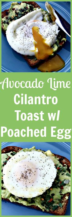 avocado lime cilantr