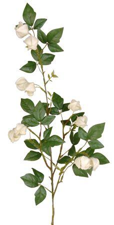 Camellia floral pinterest chinese lantern spray in cream silk flowers afloral mightylinksfo