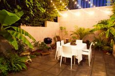 String lights in backyard trees patio lighting ideas bring stars closer by general contractor outdoor solar string lights for trees Backyard String Lights, Backyard Trees, Backyard Lighting, Patio Lighting, Lighting Ideas, String Lighting, Lighting Design, Pathway Lighting, Tropical Backyard
