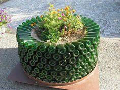 Garrafas de vidro reutilizadas para suporte de plantas.