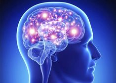 I chose this photo because it showed me the human brain as I am interested in science and want to know more things about the brains and minds of humans.