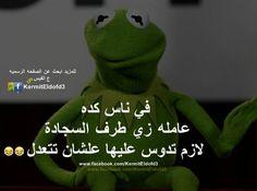 هههه. جامده اوى Arabic Funny, Arabic Jokes, English Vinglish, Kermit The Frog, Dream Life, Emoji, Comedy, Funny Quotes, Funny Pictures