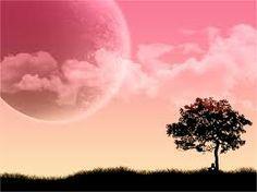 Pink Moon wallpaper by meevang Pink Moon, Red Moon, Pink Sky, Pink Sunset, Spring Wallpaper Hd, Frühling Wallpaper, Computer Wallpaper, Windows Wallpaper, Wallpaper Downloads