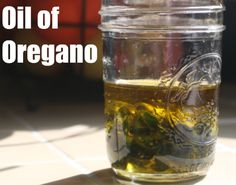 Oil of oregano for colds, aches, and pains