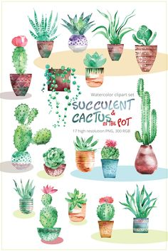 Succulent Cactus with pots clipart set Watercolor Clip Art Watercolor Succulents, Watercolor Cactus, Watercolor Paintings, Tattoo Watercolor, Painting Tattoo, Tattoo Art, Watercolor Wedding, Succulent Tattoo, Cactus Tattoo