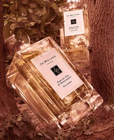 Succumb to the scent of the fabled oak. Infused into two spellbinding scents. English Oak & Redcurrant and English Oak & Hazelnut. Perfume Sale, Chanel Perfume, Perfume Bottles, Edc, Perfume Body Spray, Jurlique, Perfume Packaging, Natural Candles, Solid Perfume