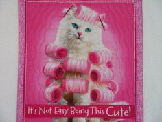 Hey, I found this really awesome Etsy listing at https://www.etsy.com/listing/204155026/mug-rug-snack-mat-cat-cute-diva-quilted