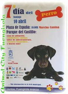 +WUAPO MODA CANINA Y MAS: DIA DEL PERRO