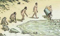 ⚜ Humor inteligente / Homo stupidus