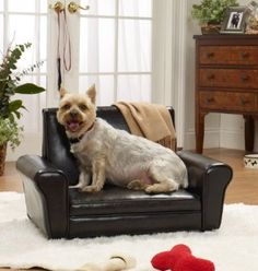enchanted home pet club chair i have to get a dog too but i think it might be worth it