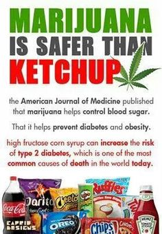 Marijuana is safer than Ketchup. The American Journal of Medicine published the fact that cannabis use helps control blood sugar levels. It also helps prevent diabetes and obesity. Weed Facts, Marijuana Facts, Marijuana Recipes, Cannabis Edibles, La Confidential, Endocannabinoid System, Puff And Pass, Medicine Journal, Medical Cannabis