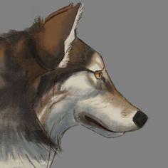 #wolf #aaronblaise #anatomy #wolfanatomy A A Ron, Animal Anatomy, Fantasy Art, Wolf, Creatures, Nature, Animals, Naturaleza, Animales