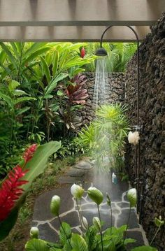 Beautiful outdoor shower. They just need a place to put those shampoo bottles other than the floor.
