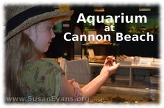 Field Trip: Aquarium - http://susanevans.org/blog/aquarium-at-cannon-beach/