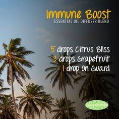 There are so many benefits to diffusing essential oils, one of the most vital is for boosting your immune system. This Immune Boost diffuser blend is excellent for safeguarding yourself against environmental threats and protecting your immune system. Citrus Bliss is a blend of wild orange peel, lemon peel, grapefruit peel, mandarin peel, bergamot peel, tangerine, clementine peel, and vanilla bean. On Guard is a blend of eucalyptus, clove, cinnamon, wild orange and rosemary…