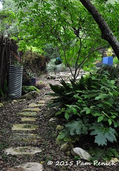 Digging | cool gardens in a hot climate