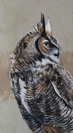 Great Horned Owl Portrait by Terry Isaac