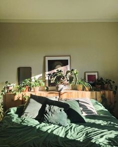 Room Ideas Bedroom, Bedroom Decor, Bedroom Inspo, Entryway Decor, Aesthetic Room Decor, Aesthetic Indie, Green Rooms, Sage Green Bedroom, Cozy Room