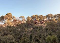 Best resort in shimla