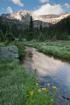 Mountain Stream - Rocky Mountain National Park - Colorado