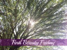 Find Beauty Friday. Sometimes we need to change our perspective.
