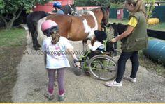 Aventura, Diversió i Cavalls Campus d'Estiu Inclusiu per a infants amb necessitats especials i diversitat funcional. Fundació Teràpia a Cavall