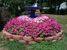 ideas for concealing stumps in yard - Yahoo Image Search Results