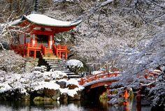 Eliot Raffit Travels Japanese Winter Gardens #EliotRaffitTravels #EliotRaffitGardens #EliotRaffitArchitecture #WinterGardens #Japan @EliotRaffit Japan Art, Winter Garden, Bow, Japanese, Architecture, World, House Styles, Travel, Arch