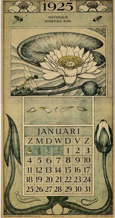 Le Roy, Charles, illustrator. January. Botanische kalender (Dutch botanical calendar). 1925.