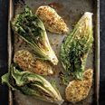 Parmesan Chicken with Caesar Roasted Romaine...    note to self... REALLY dry the romaine before roasting it.