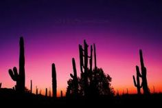 Google Image Result for http://www.hazsunsets.com/wp-content/uploads/2011/07/Sunsets-in-Arizona_edited-1-400x267.jpg