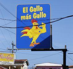 El Gallo mas Gallo (interior)