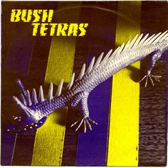 "Bush Tetras: Too Many Creeps b/w Snakes Crawl/You Taste Like the Tropics. 7"" vinyl single. 99 Records, NYC. 1980."