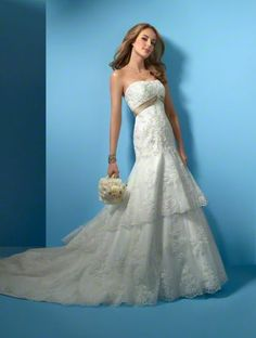 Alfred Angelo 2020 Wedding Dress $300