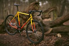 the Kepler Disc | Brother Cycles